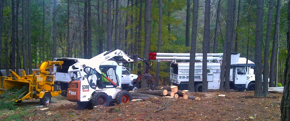 24 / 7 Emergency Tree and Crane Service for Raleigh, Durham, Wake Forest and surrounding areas.