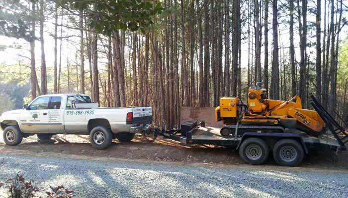 Raleigh, Wake Forest - Stump Grinding & Removal