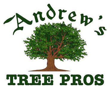 Andrew's Tree Pros has been in the tree service industry for over 17 years.
