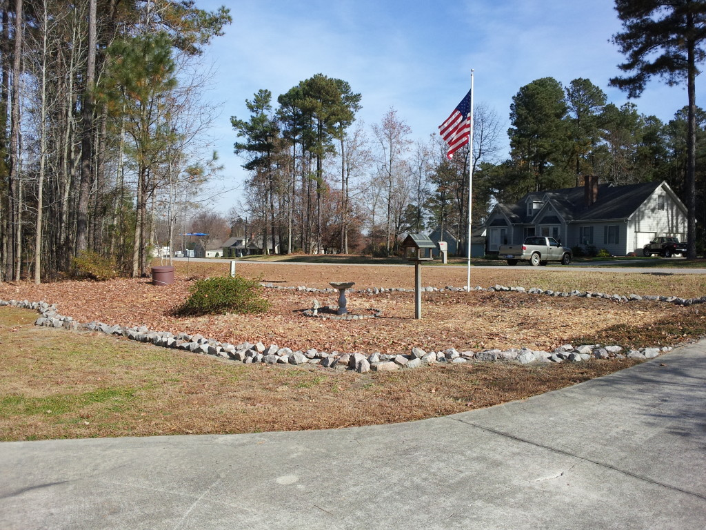 Andrew's Tree Pros Stump Grinding and Stump Removal Services