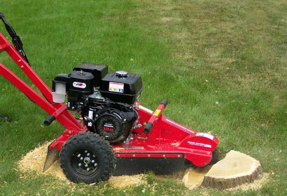 Why Not To Rent A Stump Grinder Wake Forest North