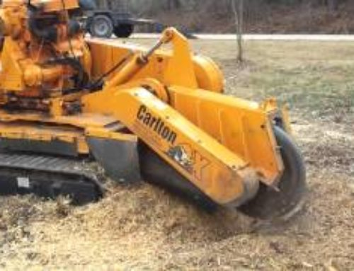 Stump grinder operated with wireless remote…